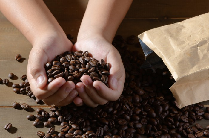 fresh coffee beans in hands child