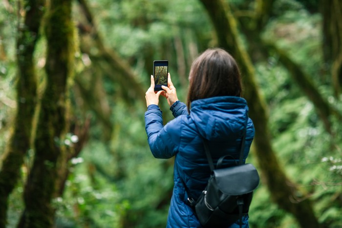 Young traveler woman taking a photo of forest